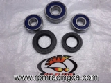 Rear Wheel Bearing & Seal Kit 91-01